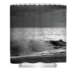 Florida Wave Bw Shower Curtain
