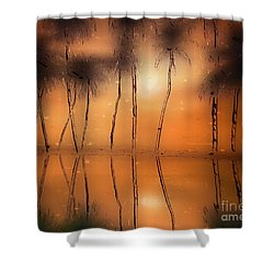 Floridian Waters Shower Curtain