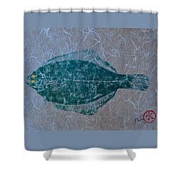 Flounder - Winter Flounder - Black Back Shower Curtain