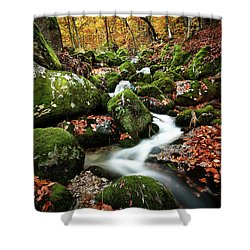 Flow Shower Curtain by Jorge Maia