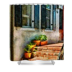 Flower - Plants - The Stoop  Shower Curtain by Mike Savad