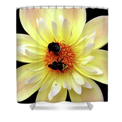Flower And Bees Shower Curtain