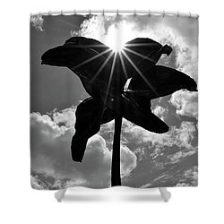 Shower Curtain featuring the photograph Flower Art by Zawhaus Photography