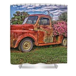 Dodge Flower Bed Shower Curtain