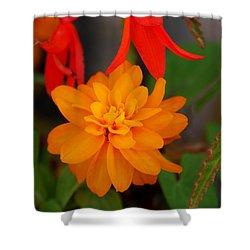 Shower Curtain featuring the photograph Flower by Bernd Hau