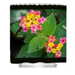 Flower Bloom Shower Curtain