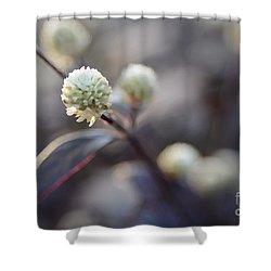 Flower Bokeh Shower Curtain