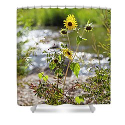 Flower By Stream Shower Curtain