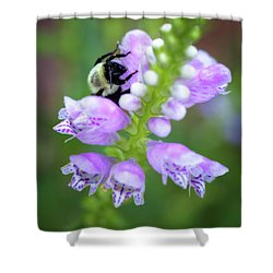 Shower Curtain featuring the photograph Flower Climbing by Eduard Moldoveanu