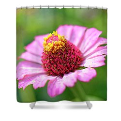 Flower Close-up Shower Curtain