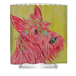 Flower Dog 6 Shower Curtain
