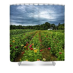 Flower Field At North Sea Farms Shower Curtain