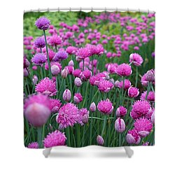 Whistler, British Columbia Shower Curtain by Heather Vopni