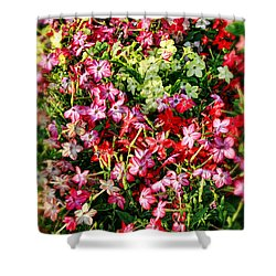 Flower Garden 1 Shower Curtain