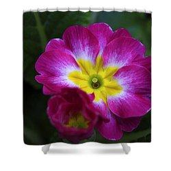 Flower In Spring Shower Curtain by Deborah Benoit