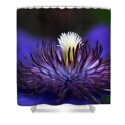 Flower Light Shower Curtain
