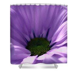 Flower Macro Beauty 4 Shower Curtain