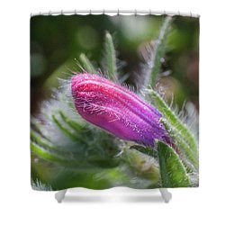 Flower-macro Shower Curtain