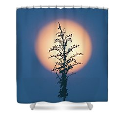 Flower Moon May 2017 Square Shower Curtain by Terry DeLuco