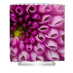 Flower No. 4 Shower Curtain