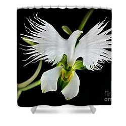 Flower Oddities - Flying White Bird Flower Shower Curtain