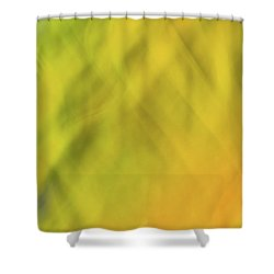 Flower Of Fire 1 Shower Curtain