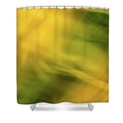 Flower Of Fire 5 Shower Curtain