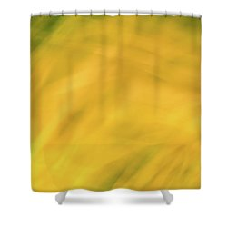 Flower Of Fire 6 Shower Curtain