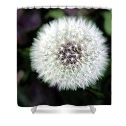 Flower Of Flash Shower Curtain by Mark Ashkenazi