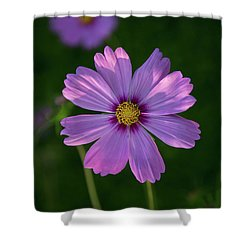 Shower Curtain featuring the photograph Flower Of Love by Dale Kincaid