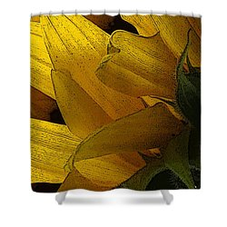 Flower Of The Sun Shower Curtain by I'ina Van Lawick