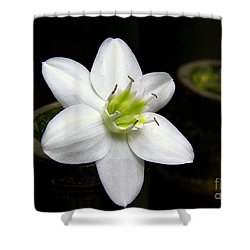 Shower Curtain featuring the photograph Flower On Bamboo by Lisa L Silva