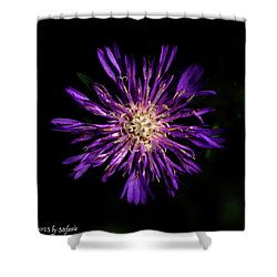 Flower Or Firework Shower Curtain