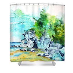 Flower Pot Island Shower Curtain