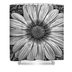 Flower Power - Bw Shower Curtain