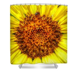 Flower Power Shower Curtain