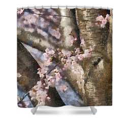 Flower - Sakura - Spring Blossom Shower Curtain by Mike Savad