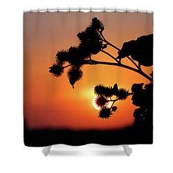 Flower Silhouette Shower Curtain by Teemu Tretjakov