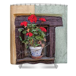 Flower Still Life Shower Curtain by Alan Toepfer