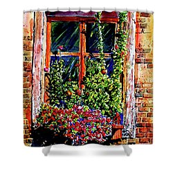 Flower Window Shower Curtain