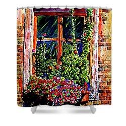 Flower Window Shower Curtain by Terry Banderas