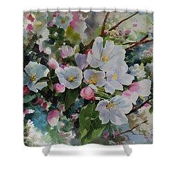 Flower_12 Shower Curtain