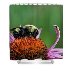 Flowerbee Shower Curtain by Nikki McInnes