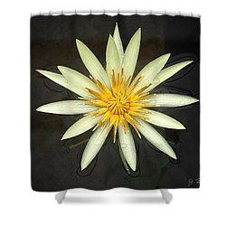 Flowerburst Shower Curtain
