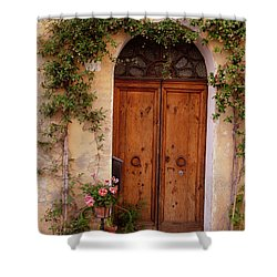 Flowered Tuscan Door Shower Curtain by Donna Corless
