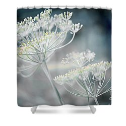 Shower Curtain featuring the photograph Flowering Dill Clusters by Elena Elisseeva