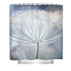 Shower Curtain featuring the photograph Flowering Dill Details by Elena Elisseeva