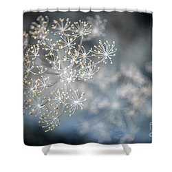 Shower Curtain featuring the photograph Flowering Dill Macro by Elena Elisseeva