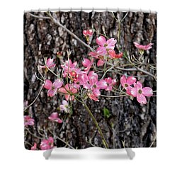 Flowering Dogwood And Pine Vertical Shower Curtain
