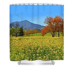 Flowering Meadow, Peaks Of Otter,  Virginia. Shower Curtain